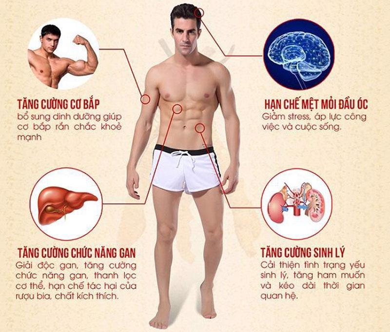 Đông trùng hạ thảo mang lại nhiều tác dụng cho nam giới