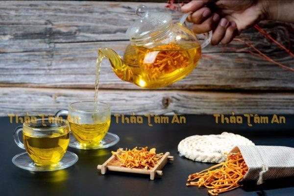 Uống đông trùng hạ thảo tươi bằng cách pha trà